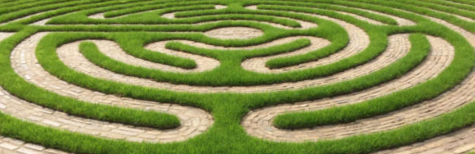 health coaching labyrinth